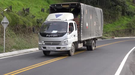 camionagem : Delivery Truck, Cargo, Freight, Shipping