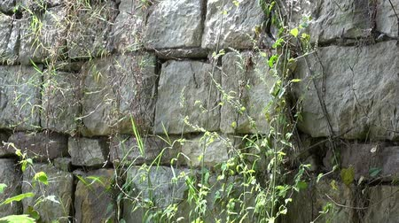 kamień : Stone Wall, Rock, Structure