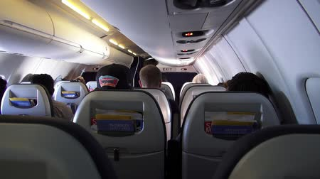 steward : Airplane Cabin, Passengers, Seats, Flights