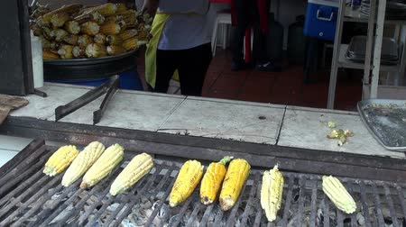 cozinhado : Grilled Corn, BBQ, Barbeque, Food, Cooking Vídeos