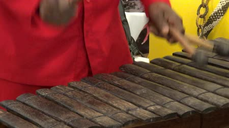 bicí nástroje : Xylophone, Percussion, Musical Instruments