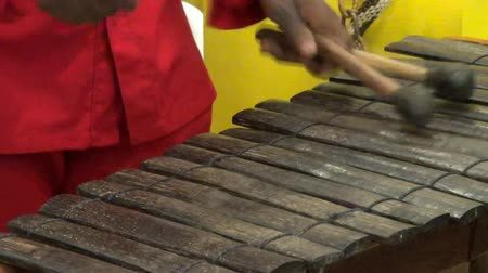 perkusja : Xylophone, Percussion, Musical Instruments