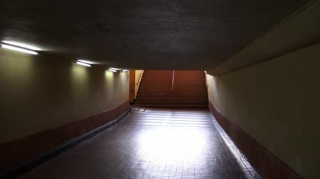 eixo : Tunnels, Underpass, Pedestrian, Walking Stock Footage