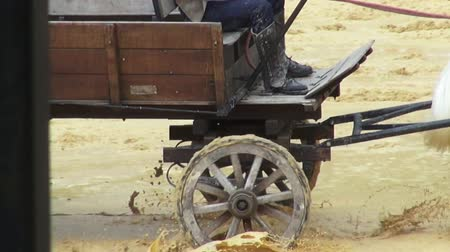 égua : Horse Drawn Carriage, Wild West, Settlers