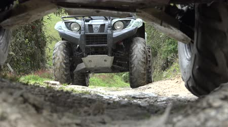 quads : ATV, All Terrain Vehicles, 4x4 Motor Sports, Quads, Dirt