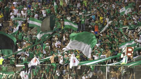 torcendo : Editorial: Fans Holding Flags Audiences Spectators