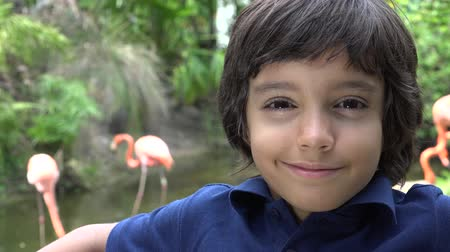 latinos : Preadolescente hispana sonriente del muchacho en el Zoo Archivo de Video