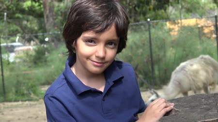 captivity : Preteen Hispanic Boy at Zoo Stock Footage