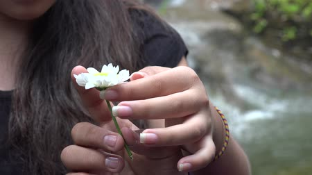 amor : Teen Girl Holding Daisy Flower