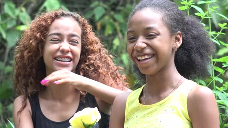 śmiech : African Sisters or Friends Laughing Wideo