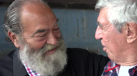 idade média : Elderly Male Friends Talking
