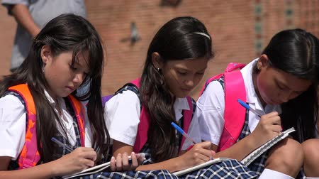 yazarak : School Children Studying  Writing Stok Video