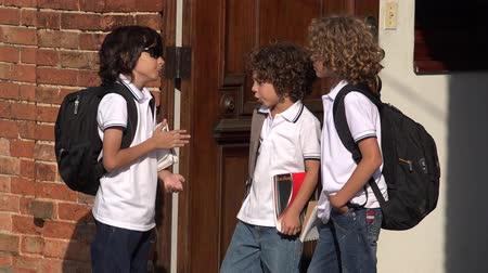 seminair : Elementary School Boys Socializing Stockvideo