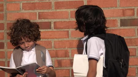 basisschool : Elementary School Boys of studenten Stockvideo