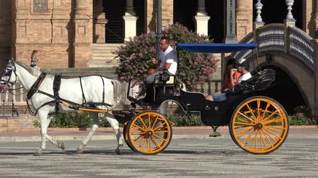 cavalo vapor : Horse Drawn Carriage With Tourists