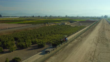 konie : Farm Lands Tractor Truck With Trailer  Mountains Bakersfields California Wide Aerial Moving  Evening Sunset Wideo
