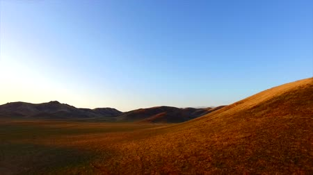 idaho : Morning Light Epic Aerial Wide Golden Hills Stock Footage