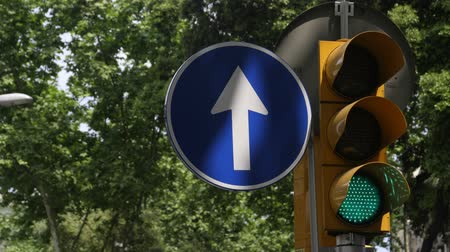 strzałki : animation using images of different arrows found on road signs in cities and urban places