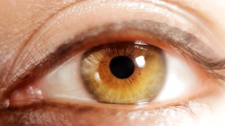 dilated pupil : close-up shot of an eye looking around Stock Footage