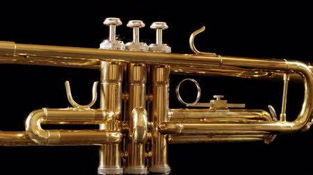 loud music : stop motion clip of a trumpet spinning around Stock Footage