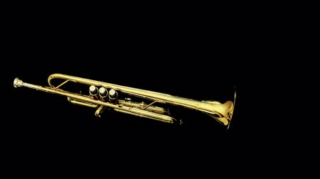 trombeta : stop motion clip of a trumpet spinning around Stock Footage