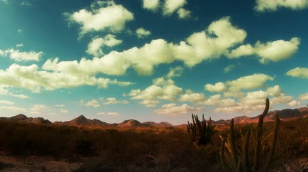 kaktusz : time-lapse of the beautiful desert landscape of baja california sur, mexico