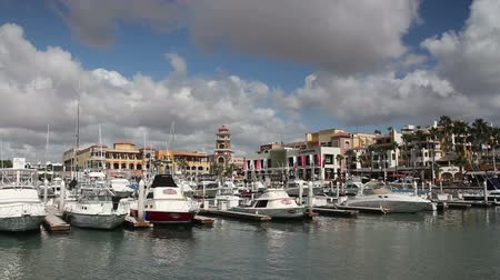 cabo san lucas : shot of the port and boats in cabo san lucas, mexico