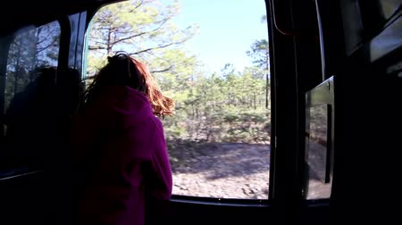 el train : a timelapse shot from the el chepe train which passes through the incredible copper canyon (Barrancas del Cobre), northern mexico Stock Footage