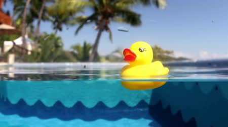утки : a yellow plastic duck floating in a swimming pool, filmed with an underwater camera
