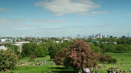 kankalin : Timelapse of crowds of people enjoying the views of the london skyline from primose hill on a sunny day Stock mozgókép