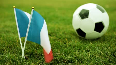 french team : Flag of France and soccer ball. French flag and ball on the grass.