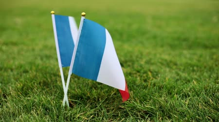 french team : Flag of France on the grass. The French flag flutters in the wind.