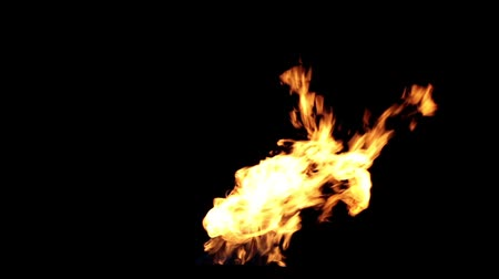 элементы : Fire on a black background. Стоковые видеозаписи