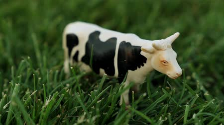 horned : Figurine of a cow on the grass. Toy cow on the lawn.