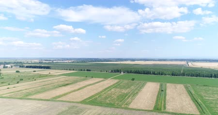 orta hava : Aerial photography, large field, farm, agriculture. Stok Video