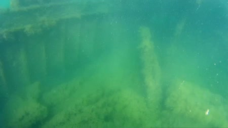 kittiwake : Sunken ship under water in the sea.