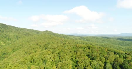 Румыния : Aerial photography, green forest, mountains and hills. Beautiful panorama of nature.
