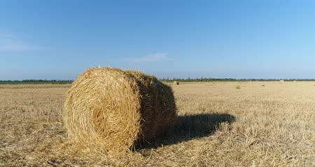 palheiro : Aerial - A haystack in the field. Harvesting, agriculture, straw.