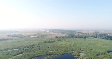 slough : Aerial video, a large swamp or a lake. Russia, the lake, the forest. Stock Footage