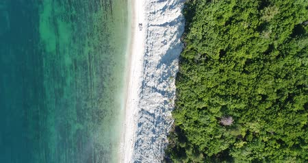 aerialphotography : Aerial view, sea, beach and forest. Stock Footage