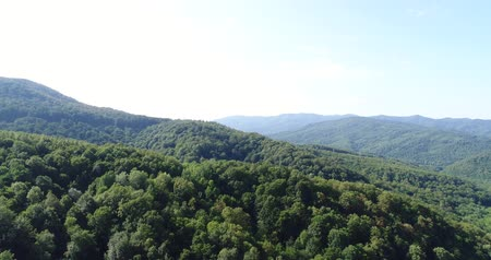 aerialphotography : Beautiful green hills, mountains and forest.