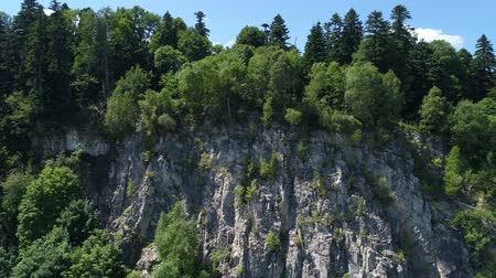 aerialphotography : Aerial view - rocks and green trees, forest. Stock Footage