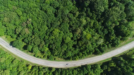 giostre : Aerial view, car rides along the highway. The road is in the form of a smile.