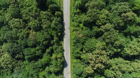 asphalt road : Aerial view, highway in the middle of the forest. Stock Footage