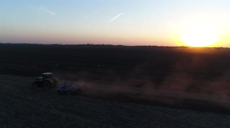 ekili : Russia, Krasnodar, September 2018. Tractor rides in a field at sunset or dawn. Stok Video
