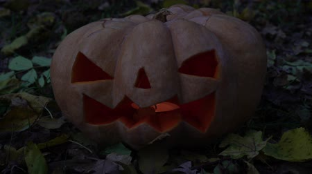 citrouille : Scary Halloween pumpkin with luminous eyes.