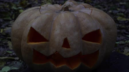 uğursuz : Sinister pumpkin in the dark, symbol of the holiday Halloween.