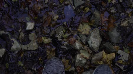 buty : A man walks on stones and leaves. Hiking, sneakers close-up. Wideo
