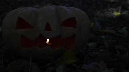 anão : Halloween, scary glowing pumpkin, Jacks lantern.