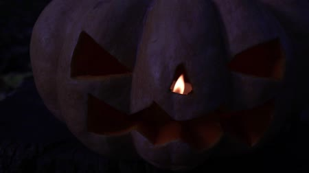 anão : Autumn holiday Halloween. Scary glowing pumpkin, Jacks lantern.